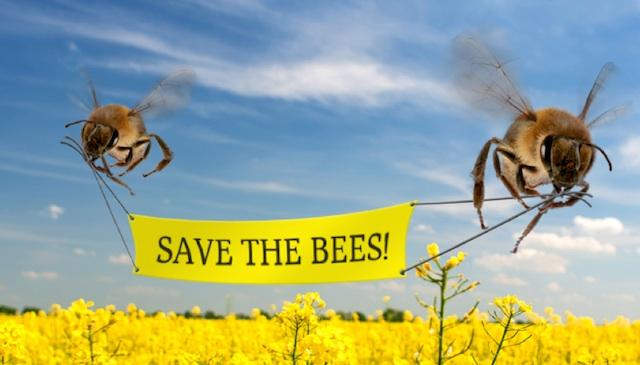 Savethebees